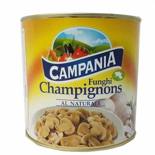 champignon campania